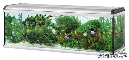 Аквариум Ferplast Star 200 Fresh Water 750л