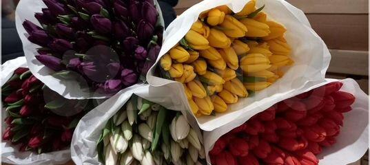 теплица тюльпан купить в красноярске