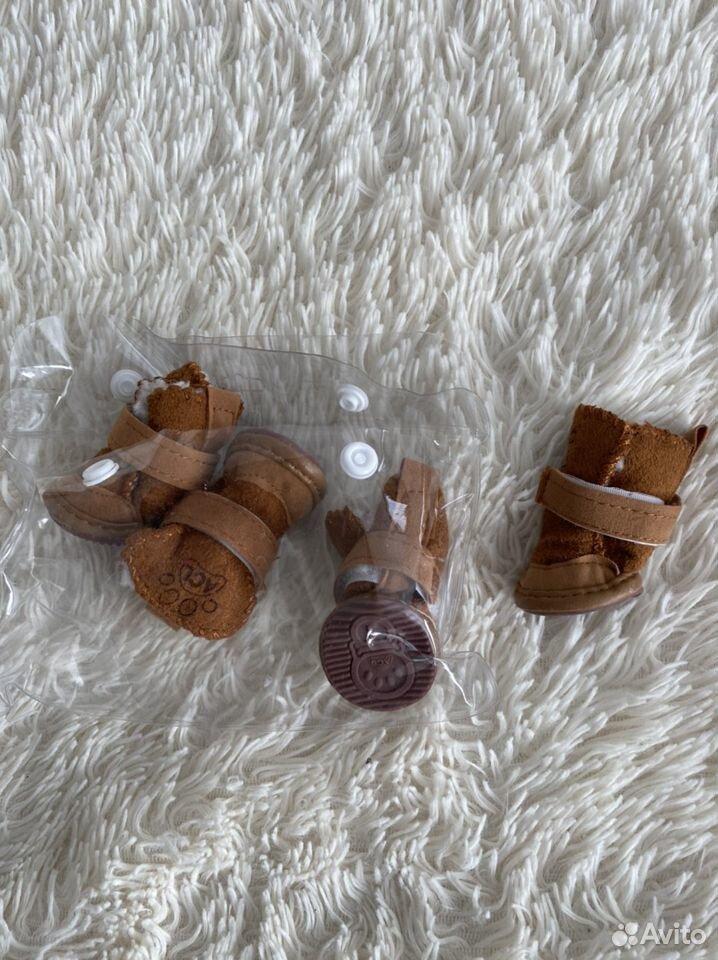 Одежда для собак  89506762401 купить 2