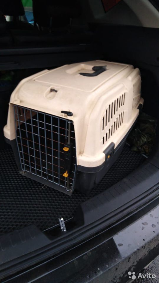 Sell pet carrier